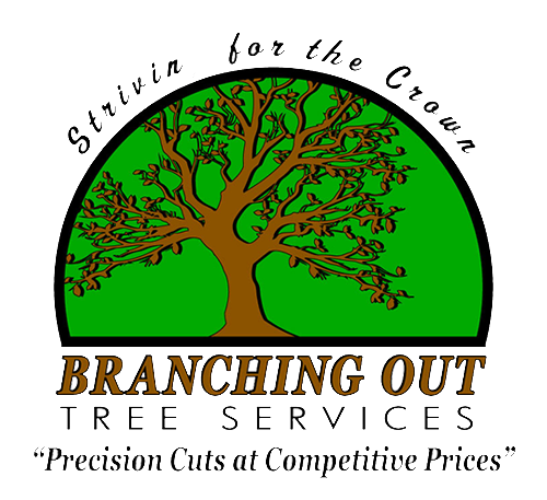 Branching Out Tree Care Experts Logo